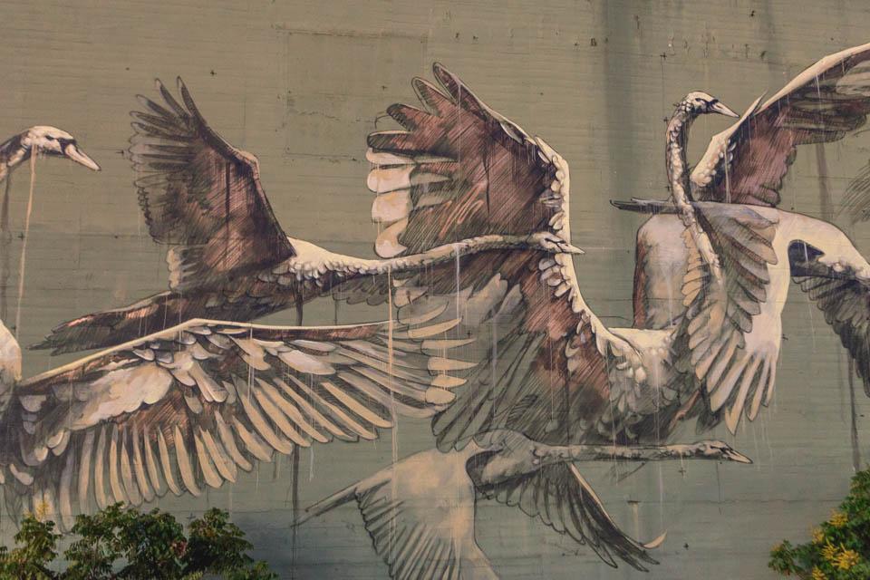 faith47_birdman-1